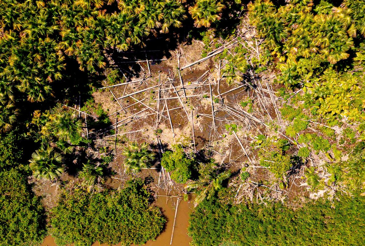 Aerial view of a deforested area in the municipality of Melgaco, Para State, Brazil, on July 30, 2020.  (TARSO SARRAF/AFP via Getty Images)