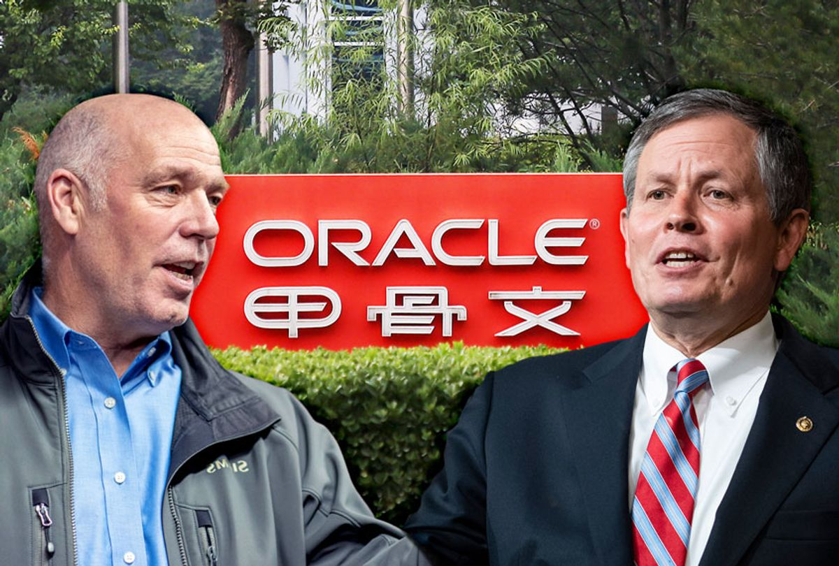 Steve Daines, Greg Gianforte, and the Oracle Corporation (Photo illustration by Salon/Getty Images)