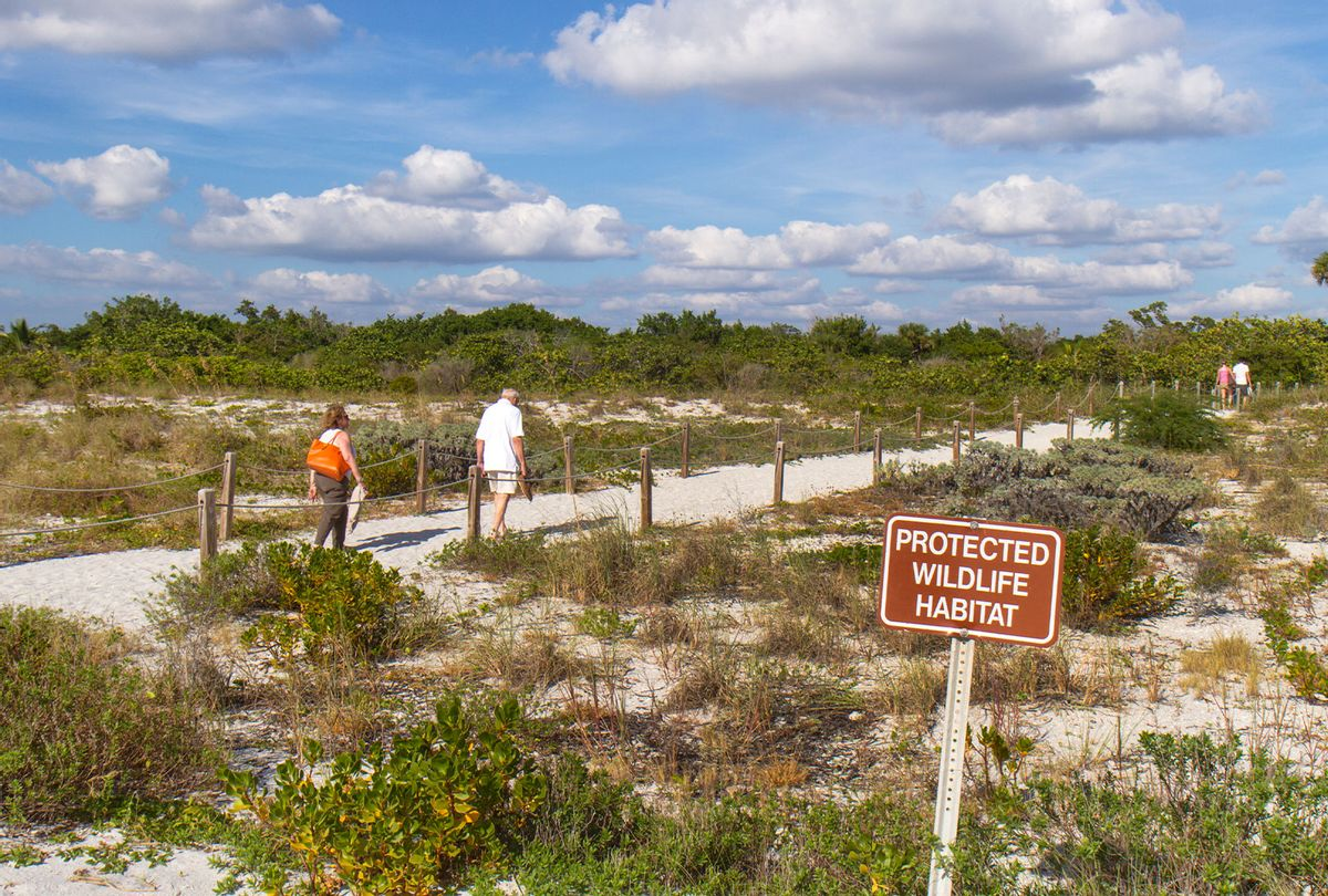 A protected wildlife habitat sign on Bowman's Beach. (Jeffrey Greenberg/Universal Images Group via Getty Images)