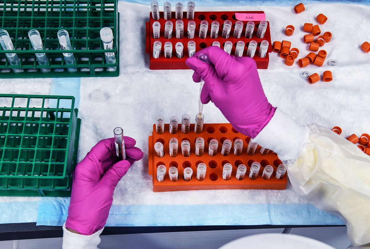 A lab technician sorts blood samples for COVID-19 vaccination study at the Research Centers of America in Hollywood, Florida on August 13, 2020. (CHANDAN KHANNA/AFP via Getty Images)
