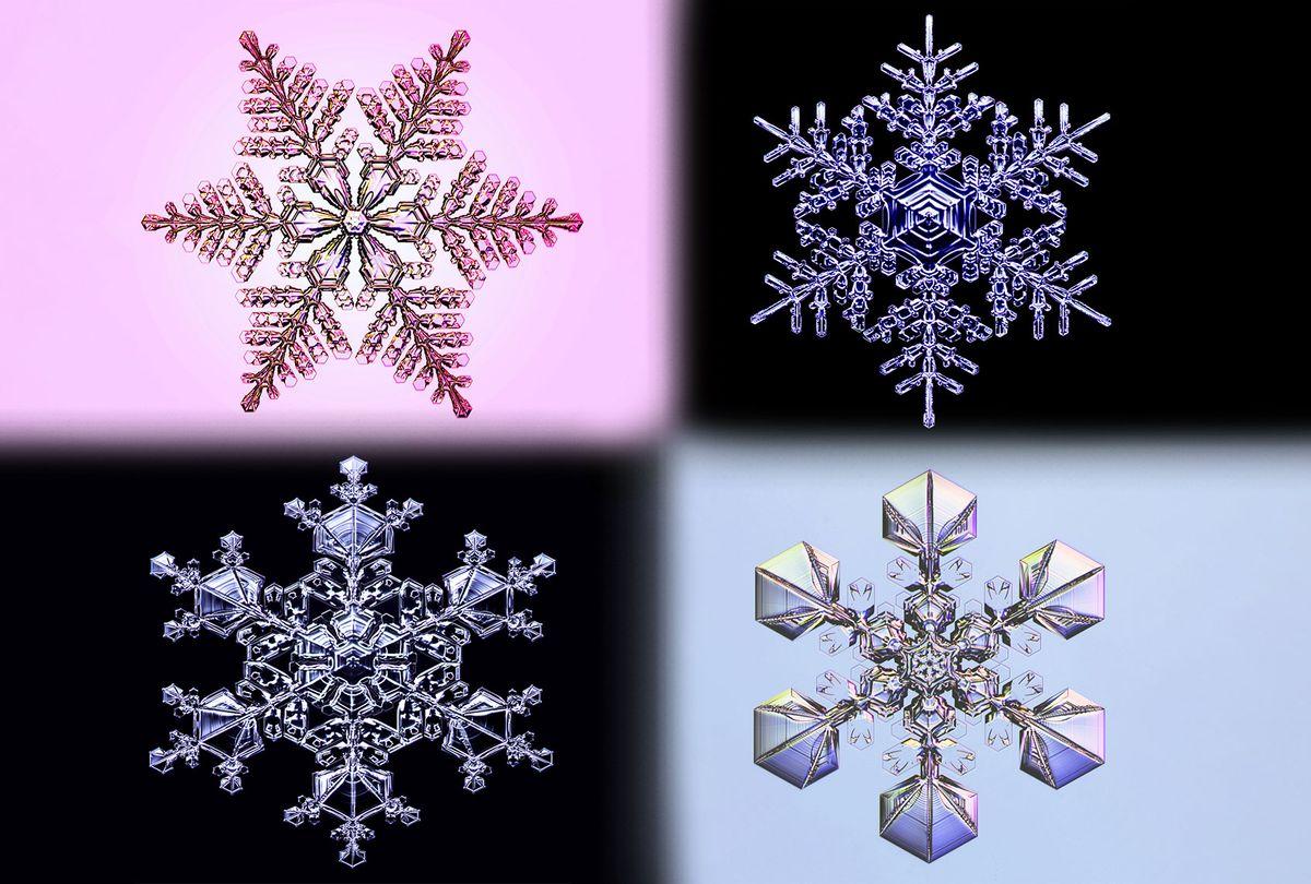 Lab Grown Snowflakes (Photo illustration by Salon/Kenneth Libbrecht)
