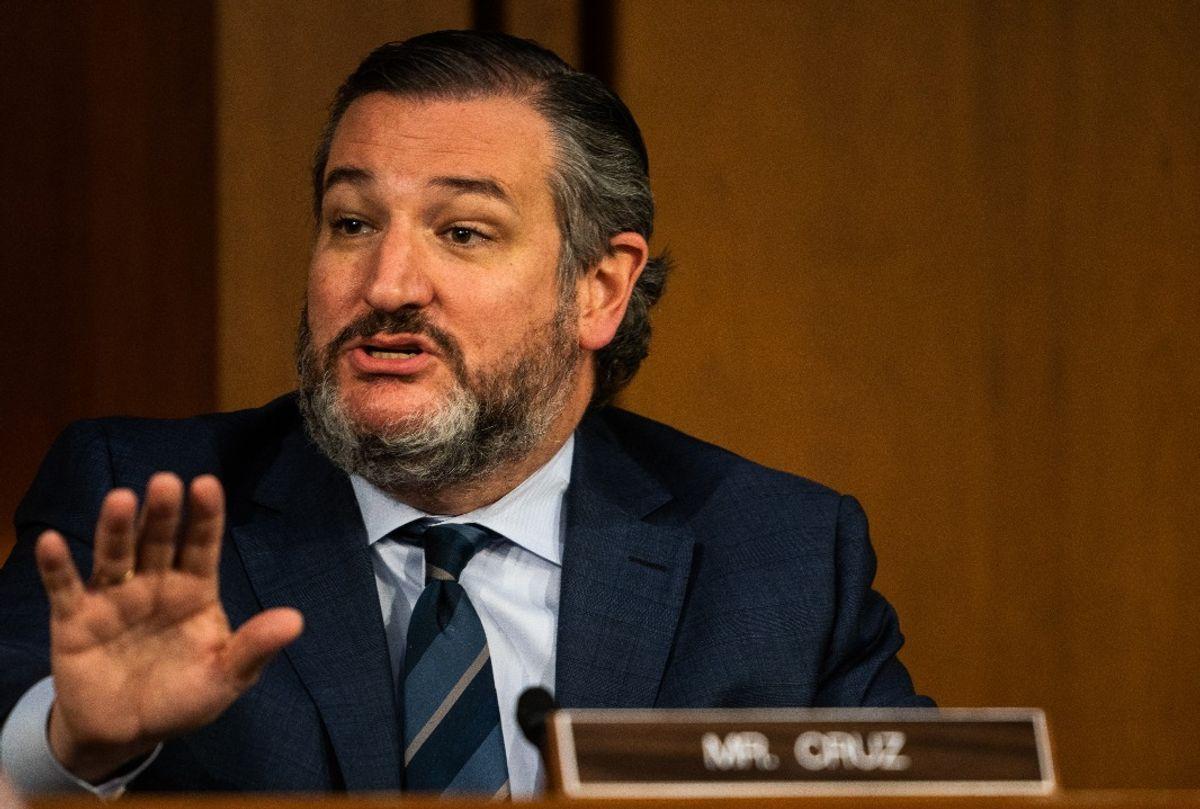 Sen. Ted Cruz (R-TX) speaks during U.S. Attorney General nominee Merrick Garland's confirmation hearing  (Demetrius Freeman-Pool/Getty Images)