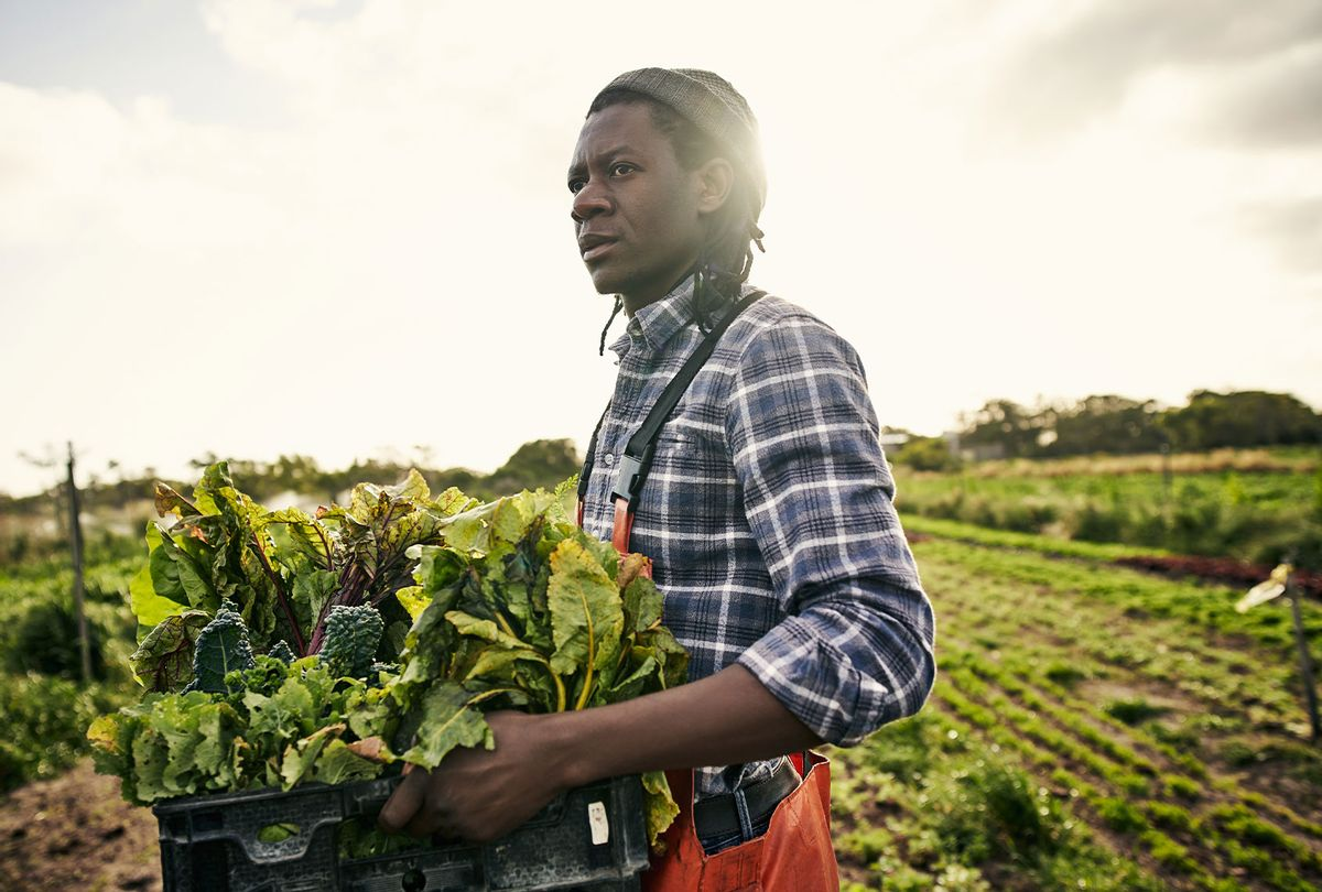 Shot of a young man holding a crate of freshly picked produce on a farm (Getty Images)