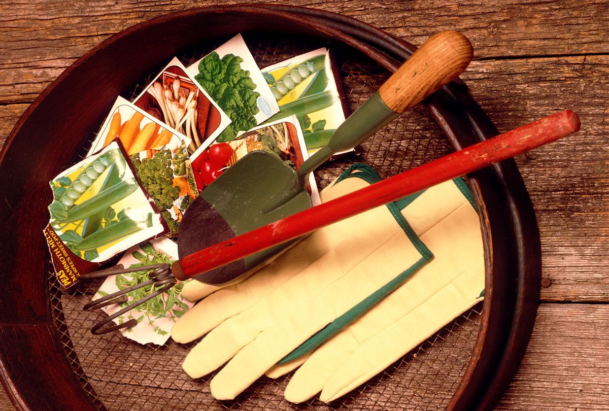 Springtime home gardening, rake, shovel, trowel, gloves, and seed packet envelopes in a soil sifter (H. Armstrong Roberts/ClassicStock/Getty Images)