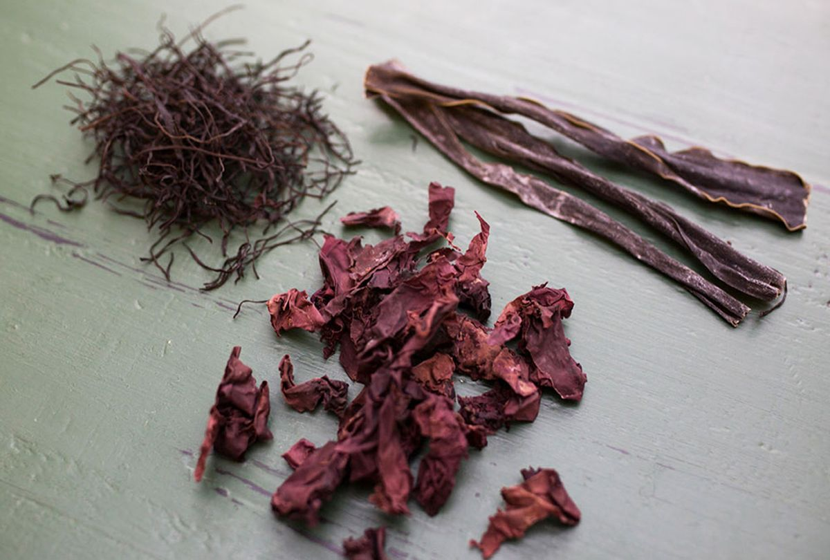 Seaweeds ((Photo courtesy of the Institute of Culinary Education)