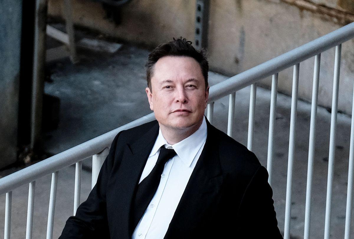 Tesla Founder Elon Musk (Michael A. McCoy/Getty Images)