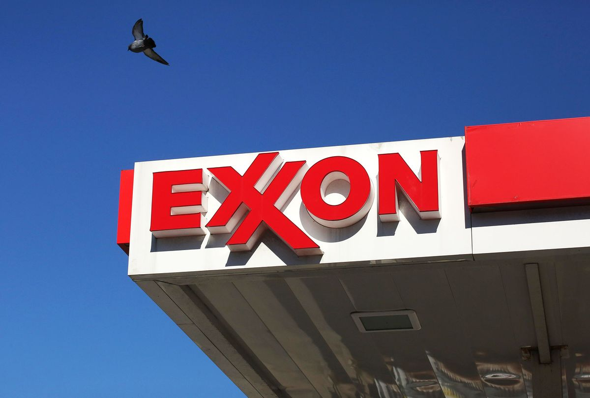 A pigeon flies over a Exxon mobil gas station (Kena Betancur/VIEWpress/Corbis via Getty Images)