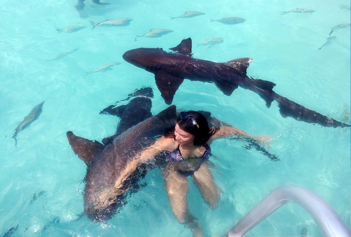 Young Woman Swimming With Nurse Sharks (Getty Images/Zoe Esteban)