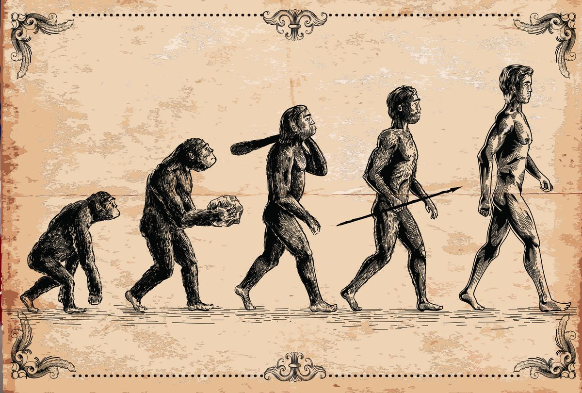 Human Evolution Illustration (Getty Images/Man_Half-tube)