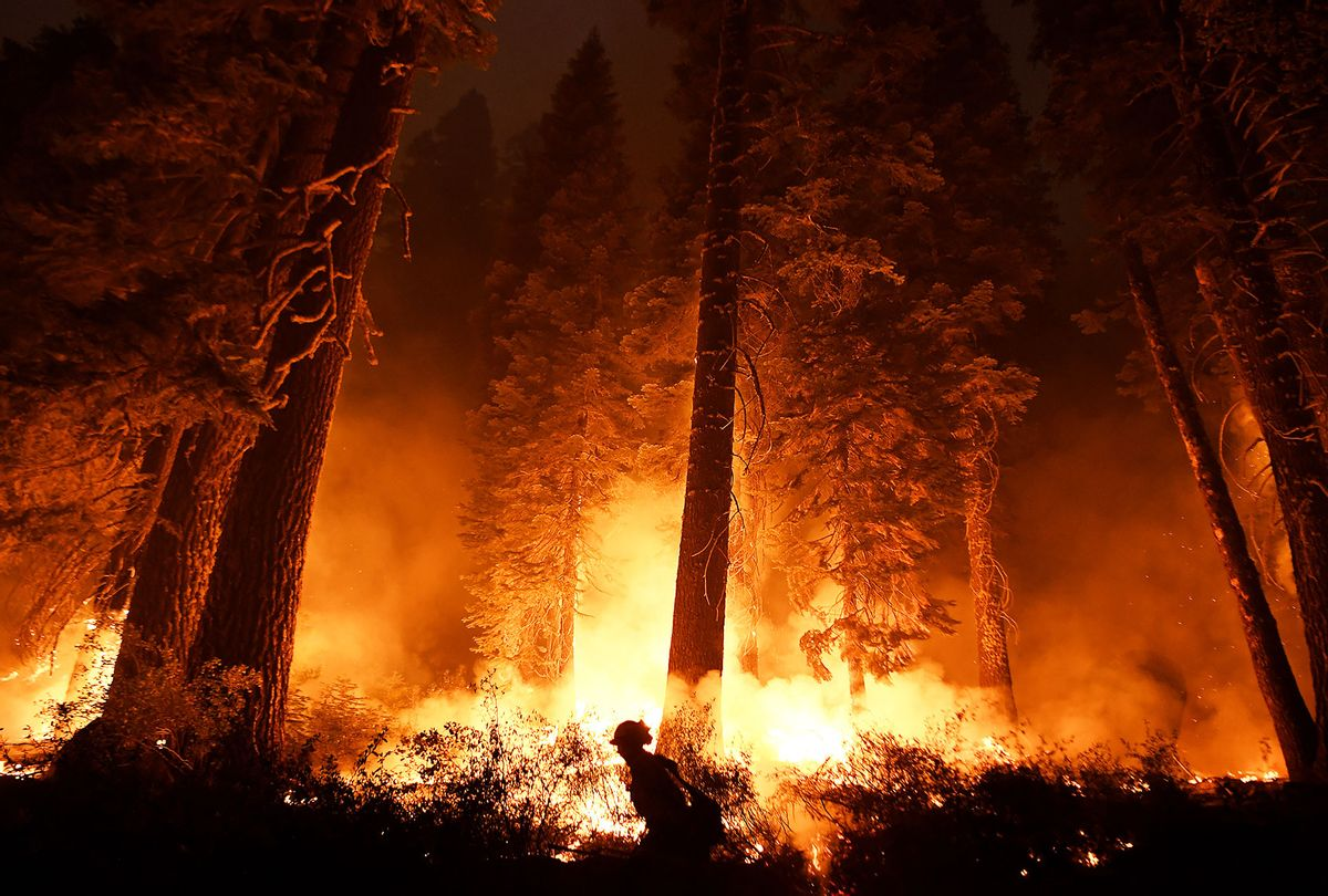 Cal firefighter Travis Moore lights a backfire along highway 50 as the Caldor Fire burns near Lake Tahoe, CA on Tuesday August 31, 2021. (Wally Skalij/Los Angeles Times via Getty Images)