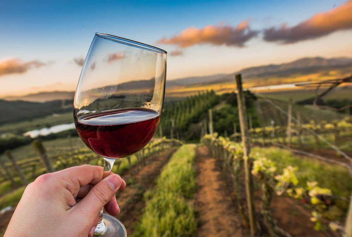Kingston Family Vineyard at Sunset with a glass of our Pinot Noir (Courtesy Kingston Family Vineyards/Vin Social)