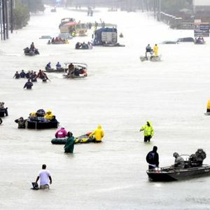 """Texas official after Harvey: The """"Red Cross was not there"""""""