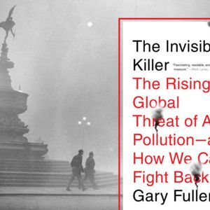 How one air pollution study from 1993 changed history