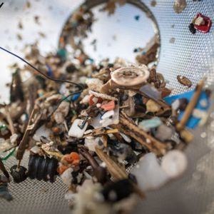 Nowhere is safe from microplastic pollution