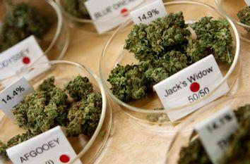 Marijuana buds are shown in a medical marijuana dispensary in Oakland