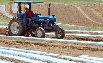 Alabama Immigration Law Farmers