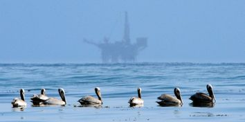 California Oil Spill-Things To Know