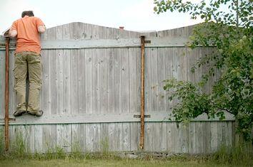 Neighbor Wall