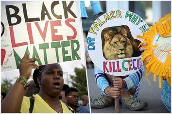 Black Lives Matter, Cecil Signs
