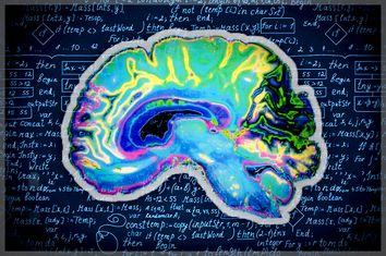 Brain Algorithm