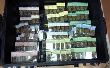 Marijuana Ring Arrests