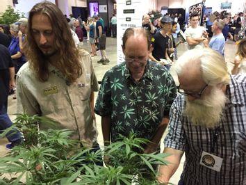 Oregon-Marijuana Fair