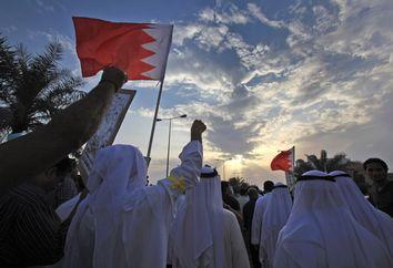 Bahrain Military Shooting