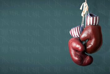 Republican Boxing Gloves