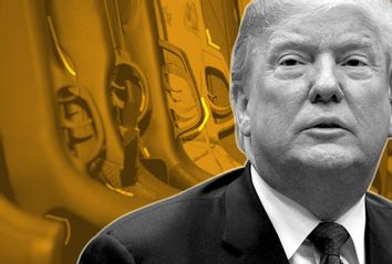 Donald Trump; Guns