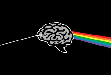 Brain Prism