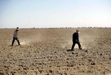 California Farmers