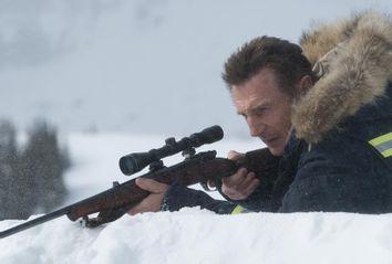 Liam Neeson as Nelson