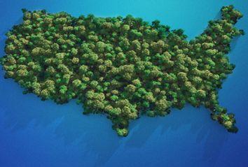 USA Island