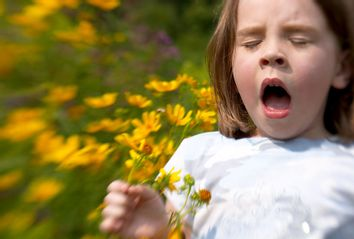 Allergies; Climate Change