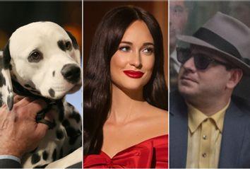 National Dog Show; Kacey Musgraves Christmas Show; The Irishman