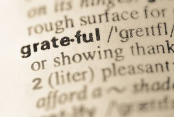 Dictionary definition of word grateful