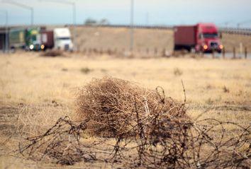 Drought; Climate Change
