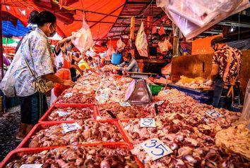 Wet Market; China