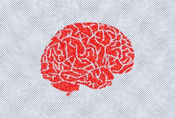 Brain Static
