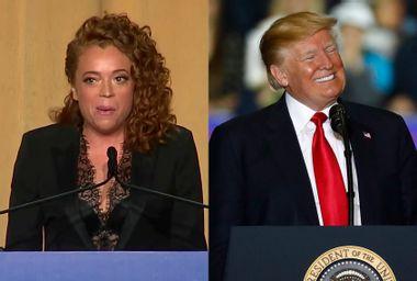 Michelle Wolf; Donald Trump