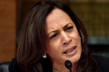 Kamala Harris criticized law firm behind Epstein's plea deal — then accepted money from it: report
