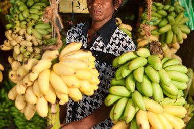 The common banana is trash and likely to go extinct: Try eating these alternatives instead