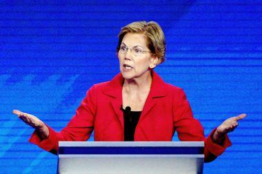 Elizabeth Warren makes President Trump's sister a target of her anti-corruption campaign: report