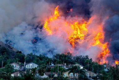 """Wildfire researchers have a """"grim"""" forecast for 2021's fire season, say it could be worse than 2020"""