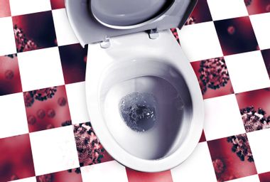 Flushing the toilet is more dangerous than you think: study
