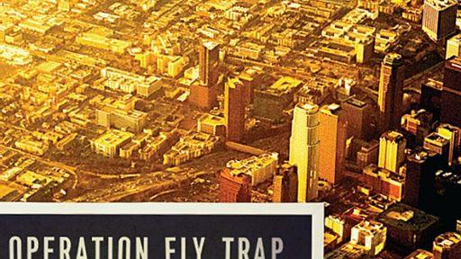 Fly trap | Salon com