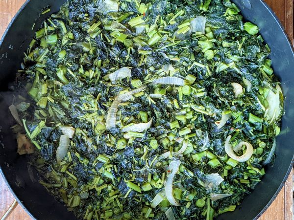 Cooked calalloo in pot