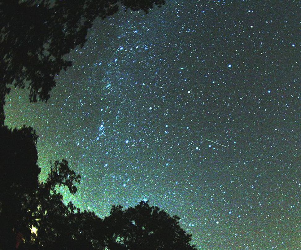 Astronomers estimate Perseid meteor shower will be twice as spectacular in 2016