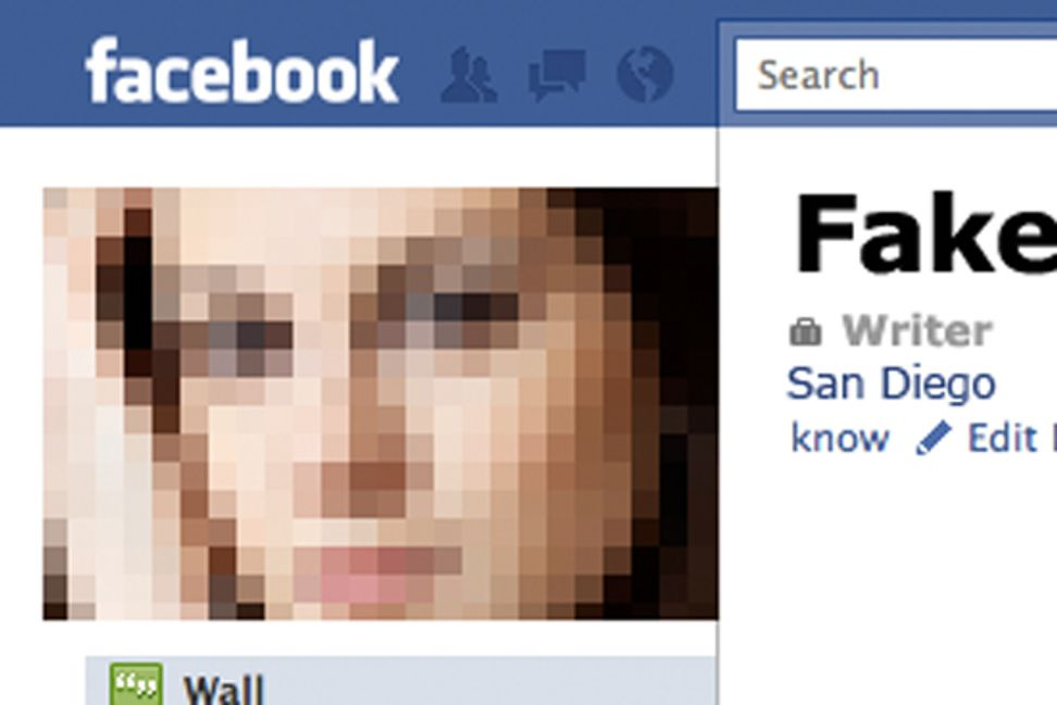 The fake Facebook profile I could not get removed | Salon.com