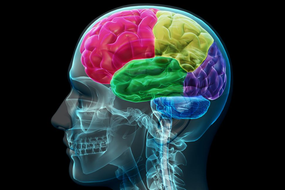 His brain injury made him a math genius: Science explains why | Salon.com